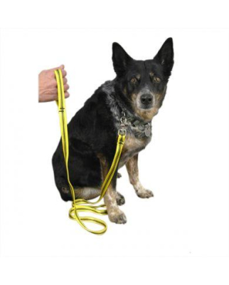 Metolius - Dog Leash